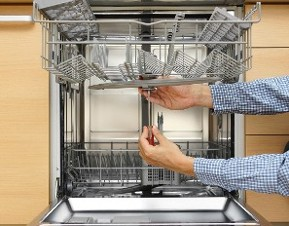 Person Working on a Dishwasher